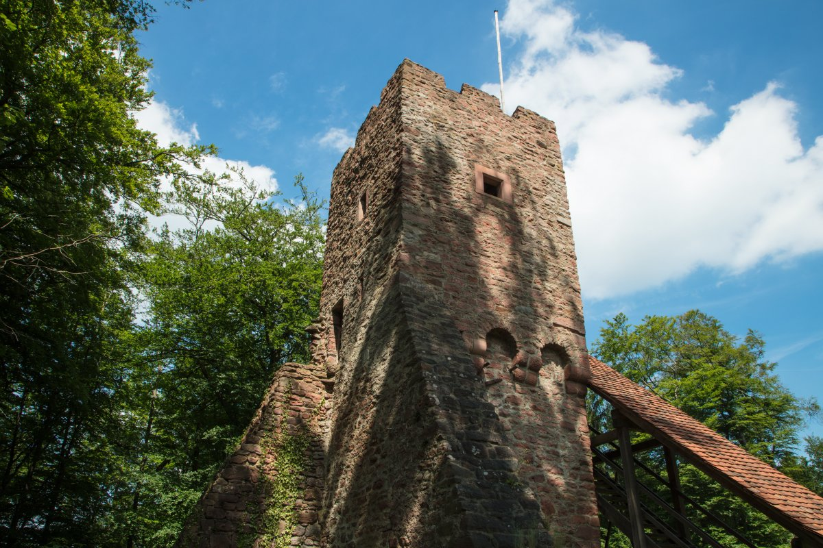 Burgruine Wildenstein in Eschau